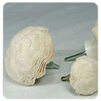 Mushroon Buff(CB-9100 ~)