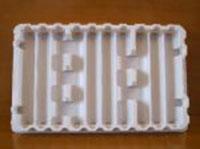 Khay nhựa định hình PP