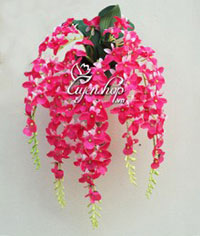 Giỏ hoa treo tường