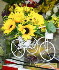 Xe đạp hoa