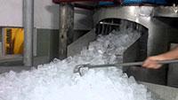 TK - TC - LĐ nhà máy nước đá