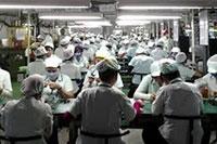 Cung cấp nguồn nhân lực lao động phố thông