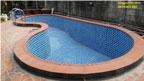 Cải tạo hồ bơi nhà Thấy Dũng