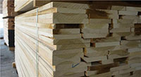 Ván gỗ bạch dương
