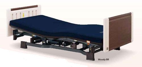 Giường điều chỉnh 2 mô tơ