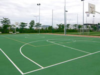 cỏ nhân tạo sân bóng rổ