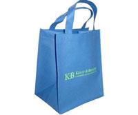 Túi quảng cáo sản phẩm