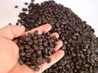 Cà phê Robusta hạt rang