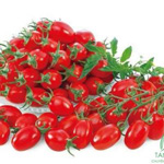 Cà chua Cherry
