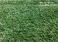 Thảm cỏ MH-10 (Cỏ cao 1 phân)