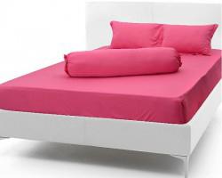 Ga trải giường cotton