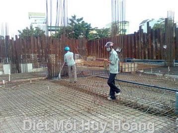 Phòng mối công trình xây mới