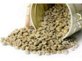 Cà phê nhân sống Robusta S18