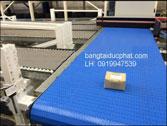 Băng tải xích nhựa