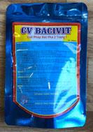 CV Bavivit