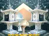 Cây thờ thiên