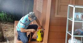 Dịch vụ diệt mối côn trùng