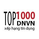Top 1000 DNVN xếp hạng tín dụng 2012