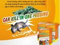 Can kill in one feeding