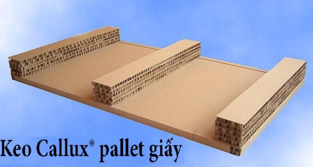 Keo Callux pallet giấy
