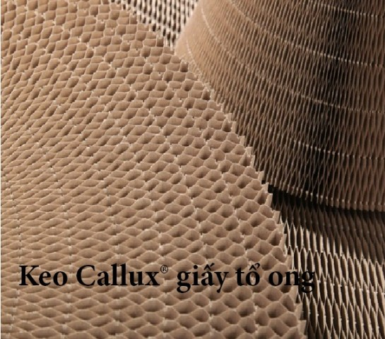 Keo Callux giấy tổ ong