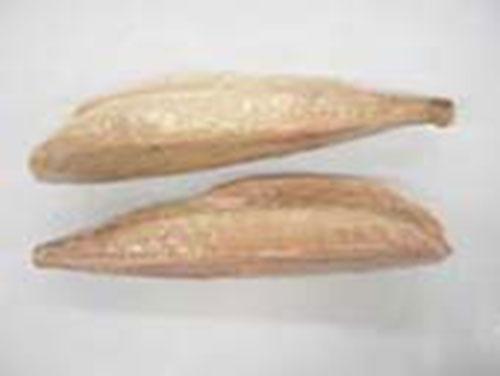 Loin cá ngừ