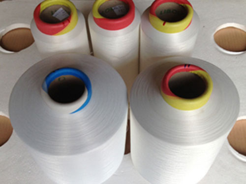 Chỉ may vắt sổ Polyester
