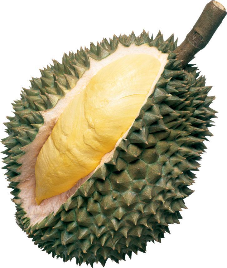 Hương sầu riêng