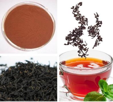 Chiết xuất trà đen