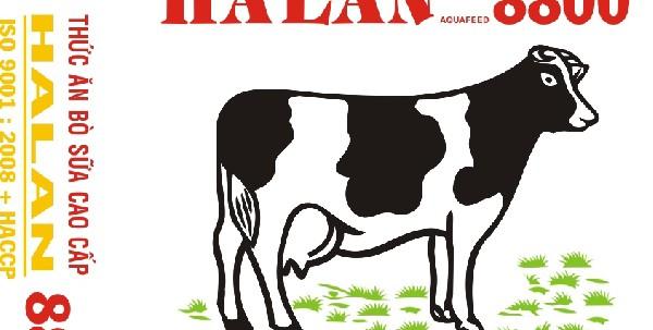 Thức ăn hỗn hợp cho bò