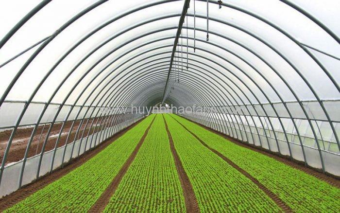 Trong Nông nghiệp