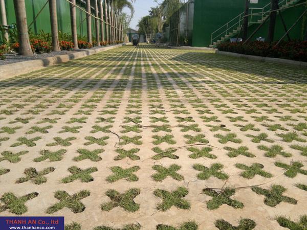 Bê tông trồng cỏ