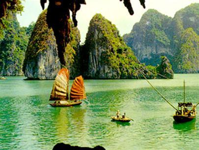 Tour Hạ Long