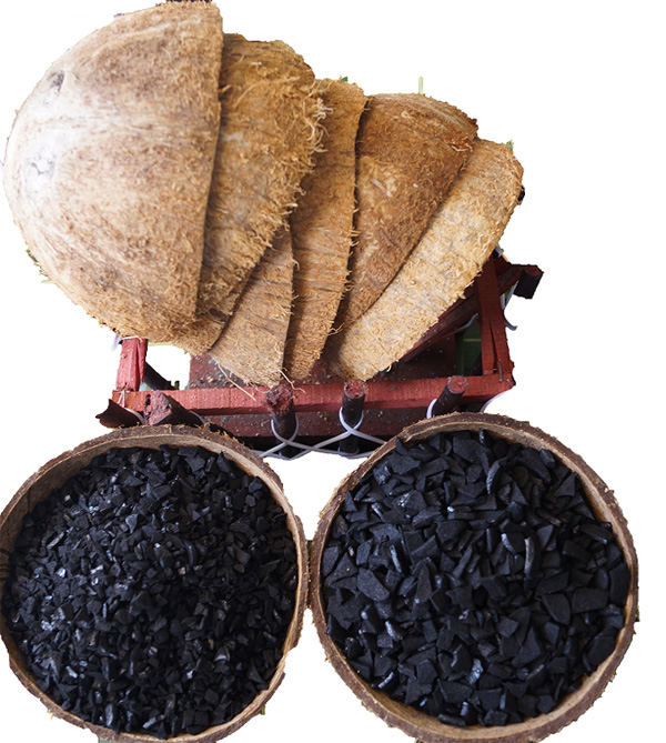 COCONUT SHELL CHARCOAL - Than gáo dừa