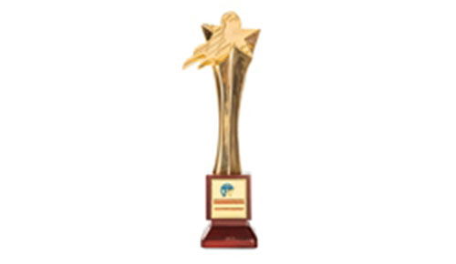 Cúp vàng Doanh nghiệp tiêu biểu Việt Nam