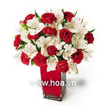 Hoa hộp bàn