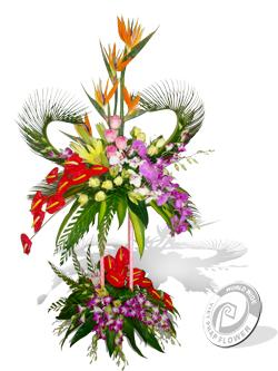 Hoa lẵng chân cao