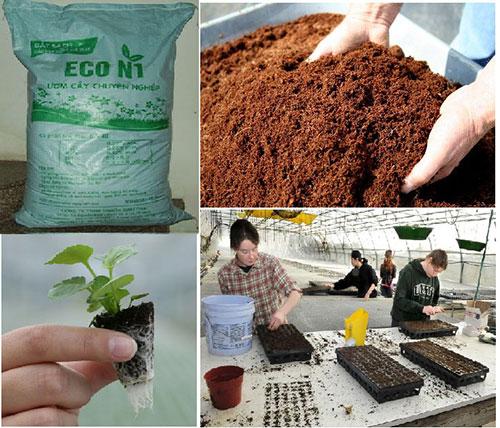 Đất sạch Eco N1