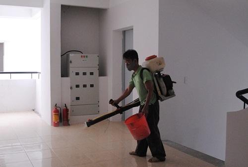 Dịch vụ phun thuốc diệt kiến