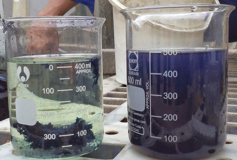Hóa chất khử nước thải (Nhật Bản)