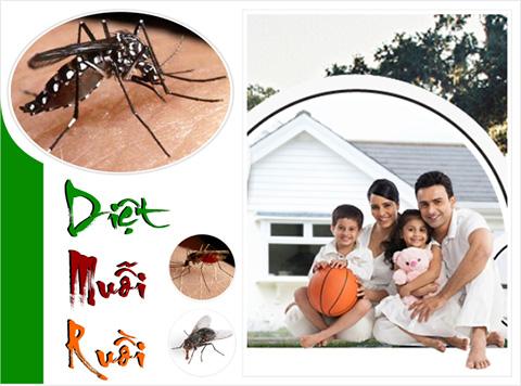Diệt mối, diệt côn trùng
