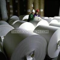 Giấy in mã vạch Fasson giấy couche