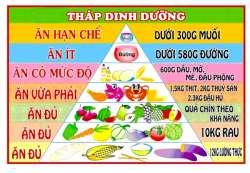 Bảng tháp dinh dưỡng