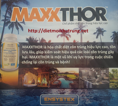 Thuốc diệt côn trùng Maxxthor