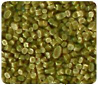 Hạt nhựa HDPE, LDPE
