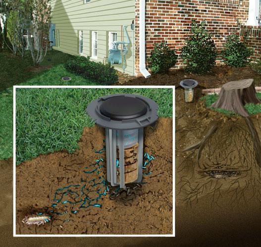 Termite-Baiting-System