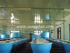 Bồn composite nuôi trồng thủy sản
