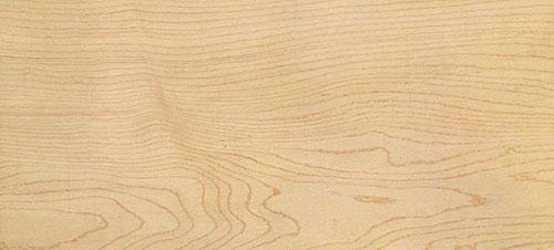 Gỗ Maple