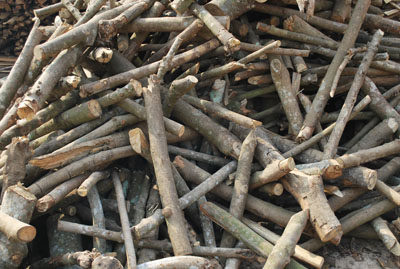 Củi gỗ cắt