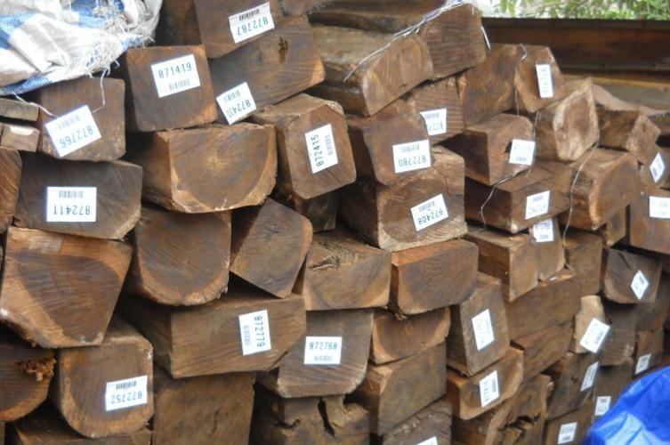 Gỗ nhập khẩu từ Lào